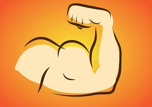 arm workouts biceps triceps