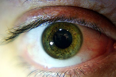 Green Eyes: Learn Why People Who Have Them Are So Unique