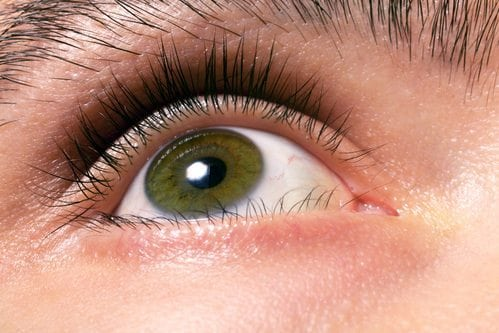 Hazel Eye Color Male
