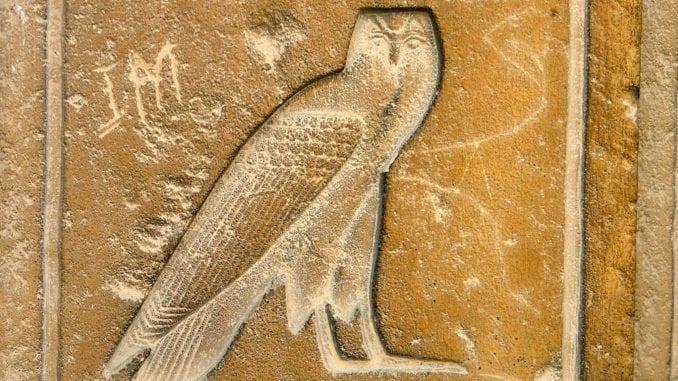 Owl Hieroglyphic
