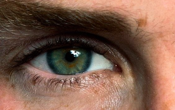 eddie redmayne blue green eyes