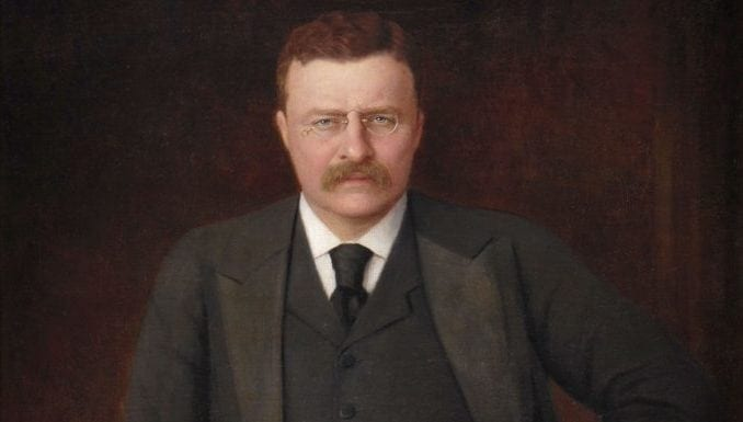 Theodore Roosevelt Accomplishments