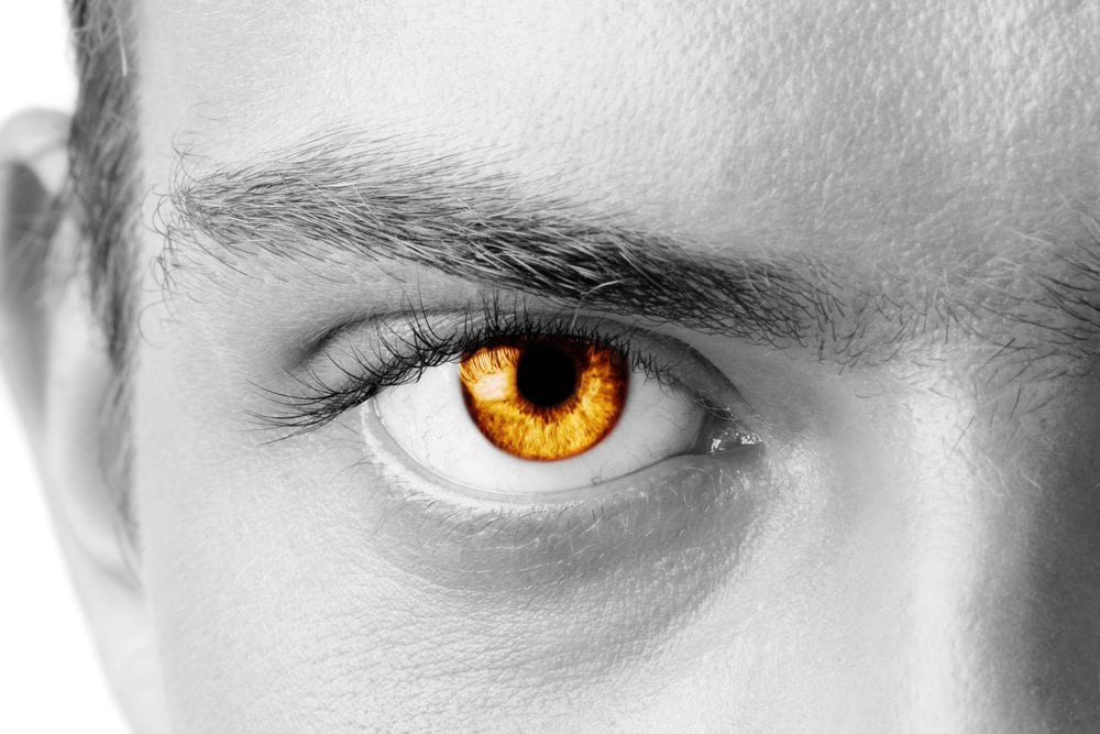 35e1509b0c4 Learn About The Origin of Amber Eyes in People | Guy Counseling