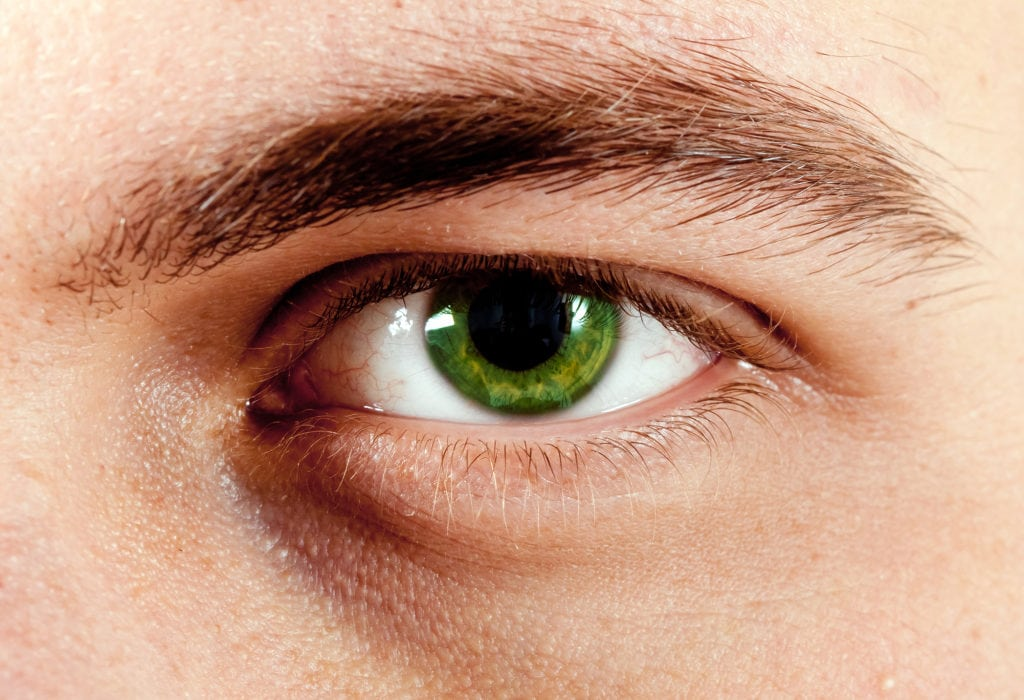 25 Amazing Facts About Green Eyes | Guy Counseling